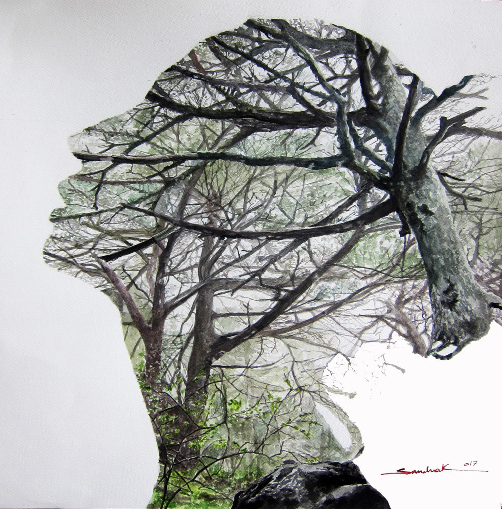 The Cedar In Her Mind   |  Watercolor  |  50x50cm